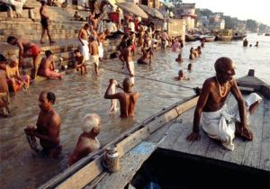 india15-semestafakta