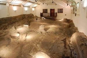 semestafakta-fossil-2-14