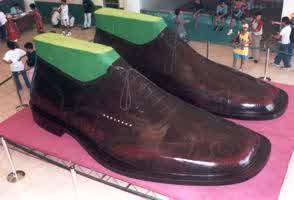 semestafakta-The P2-million shoes