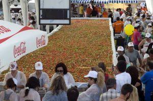 semestafakta-world's largest salad