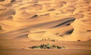 semestafakta-Al Nafud desert