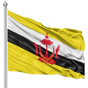 semestafakta-brunei flag