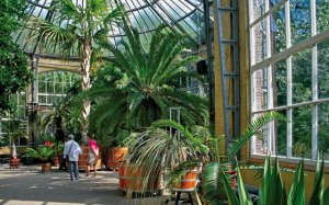 semestafakta-Hortus Botanicus