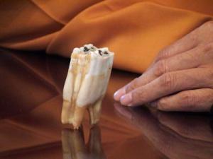 semestafakta-Tooth Relic of Buddha