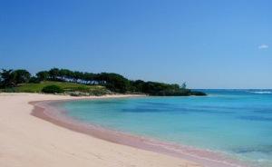 semestafakta-Pink-Sands-Beach