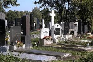 semestafakta-Zentralfriedhof