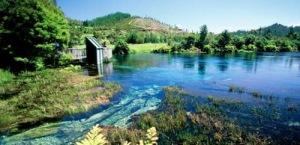 semestafakta-Crystal Clear Te Waikoropupu Springs