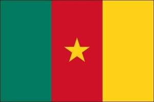 semestafakta-kamerun flag