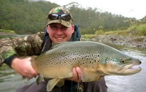 semestafakta-rainbow trout