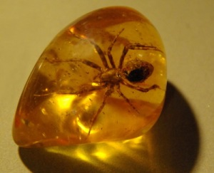 semestafakta-amber