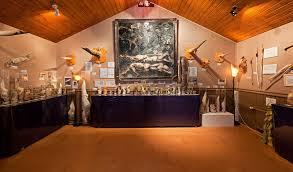 semestafakta-Icelandic Phallological Museum4