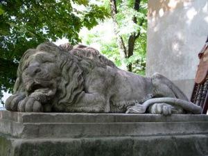 semestafakta-lion in Lviv