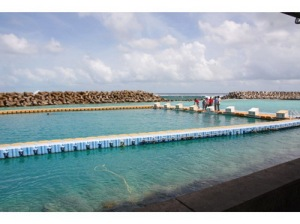 semestafakta-swiming pool in maldive