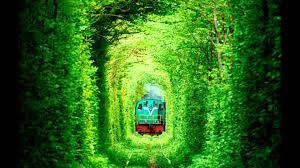 semestafakta-Tunnel of Love