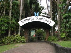 semestafakta-butterfly sanctuary