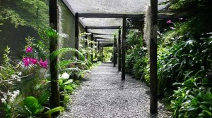 semestafakta-the Garden of the Sleeing Giant3
