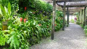 semestafakta-the Garden of the Sleeing Giant5