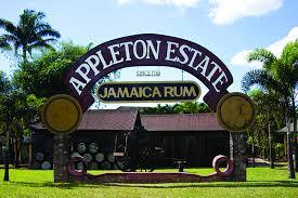 semestafakta-Appleton Este2