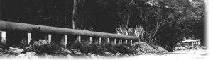 semestafakta-bog walk tube