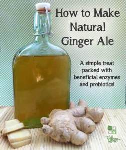 semestafakta-Ginger Ale