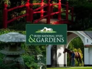 semestafakta-The Irish National Stud's Japanese Gardens