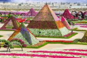 semestafakta-Dubai Miracle garden2