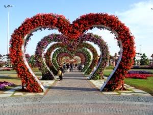 semestafakta-Dubai Miracle garden5