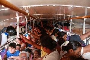 semestafakta-Chicken Bus 2