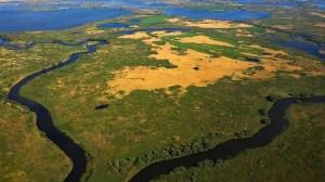 semestafakta- Danube Delta