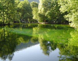 semestafakta-Vrelo Bosne2