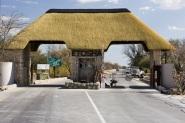 semestafakta-Etosha National Park