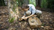 semestafakta-mushroom picking2