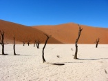 semestafakta-Namib-Naukluft Park4