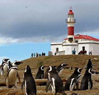 semestafakta-los penguinos naturan monument