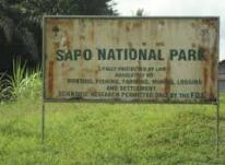 semestafakta-Sapo National Park
